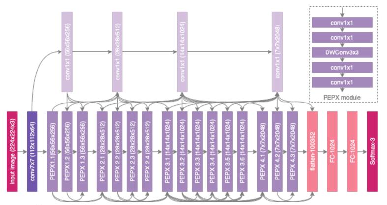 PEPX pattern